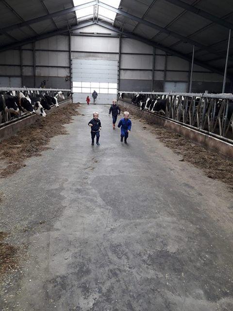 Burendag van De Skulp. Rondleiding op de boerderij bij de familie Havinga1