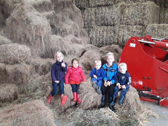 Burendag van De Skulp. Rondleiding op de boerderij bij de familie Havinga2